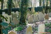 Židovský hřbitov, Písečné