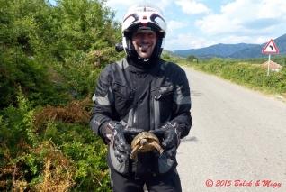 želva na cestě :-)